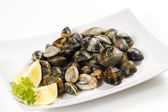 Clams — Stockfoto