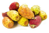 Prickly pears cactus — Stock Photo