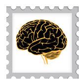 Model of human brain. eps10 vector illustration — Stock Vector