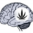 Gray human brain with sign of marijuana — Stock Vector