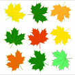 Foliage — Stock Vector #14114602