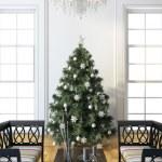 Christmas Tree — Stock Photo #17196537