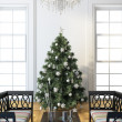 Christmas Tree — Stock Photo #17196537