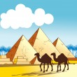 Egypt pyramids — Stock Photo #14535251