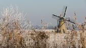 Dutch windmill in winter landscape — Stock Photo