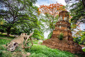 Starověké thajské ruiny v ayutthaya — Stock fotografie