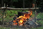 Food on the fire — Стоковое фото