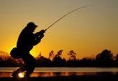Luta de peixe — Foto Stock