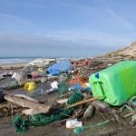 contaminación de la playa — Foto de Stock