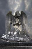 ángel de piedra — Foto de Stock