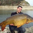 Fishing scene. common carp - Foto de Stock