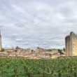 Large view on Saint Emilion — Stock Photo #15407585