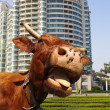 Funny cow – urban scene — Stock Photo