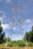 Pylône électrique — Photo