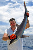 Köpek balığı — Stok fotoğraf