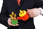 Businessman holding a flower pot and watering can — Stock Photo