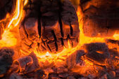 Burning firewood in flame of bonfire — Stock Photo