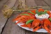 Red boiled crayfish and herbs with white sauce — Stock Photo