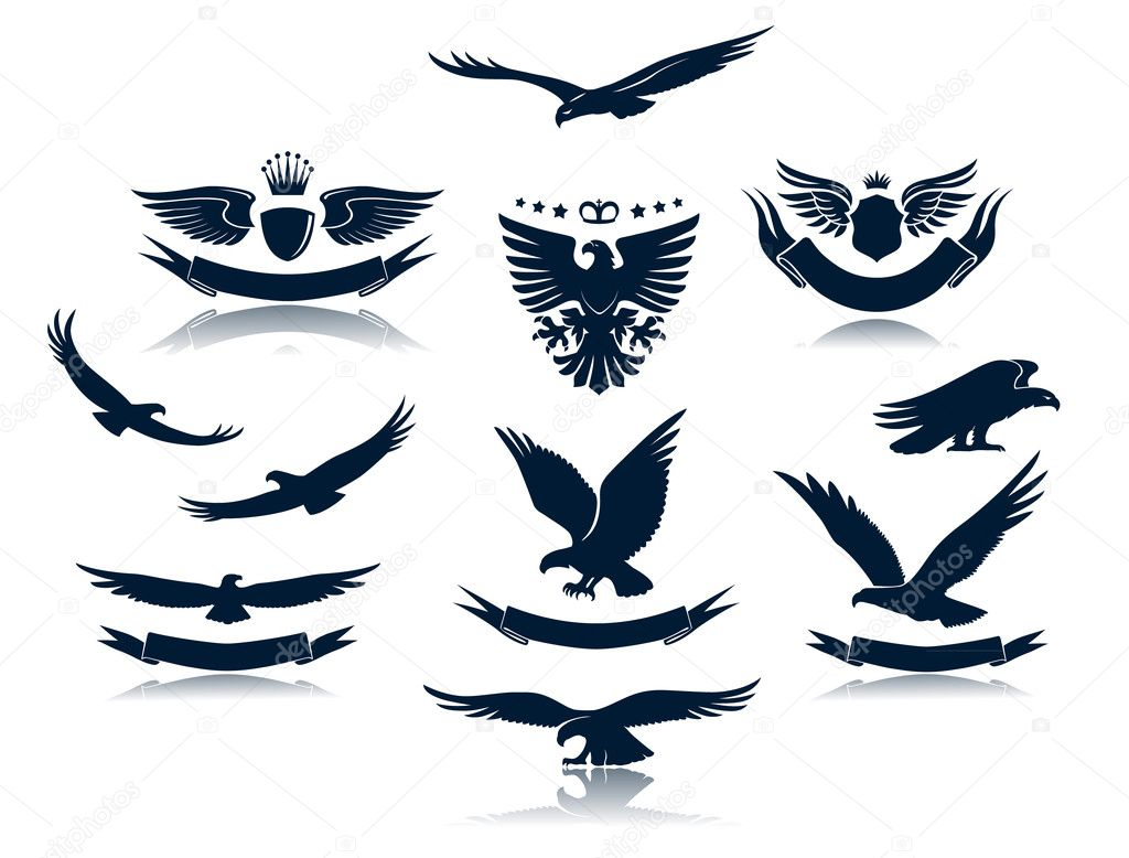 A number of eagles and  Eagle Head Silhouette Vector