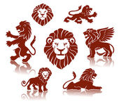 Lions illustration set — Stock Vector