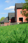House behind grass — Stock Photo