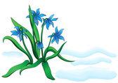 Подснежник цветы — Cтоковый вектор