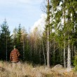 Man inspecting forest — Stock Photo