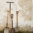 Royalty-Free Stock Photo: Garden tools
