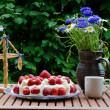 Stock Photo: Made table at midsummer