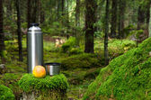 Thermos and apple in deep forest — Stock Photo
