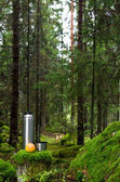 Thermos and apple in a mossy spruce forest — Stock Photo