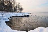 Frozen shore — Stock Photo