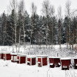 Red bee hives - Stock Photo