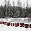 Stock Photo: Red bee hives