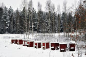 Red bee hives — Stock Photo