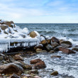 Cold coast — Stock Photo #21887201