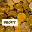 Profit sign at a stack of golden coins — Stock Photo