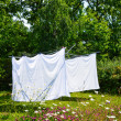 Drying laundry — Stock Photo