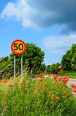 Road sign at summer flowers — Stock Photo
