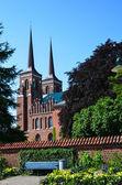 Zomerbloemen in de kathedraal van roskilde — Stockfoto