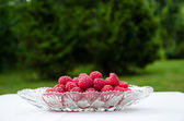 Raspberries in a bowl — Stock Photo