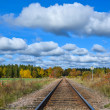 Railroad Tracks — Stock Photo #33812385