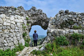 Watching from a castle ruin — Photo