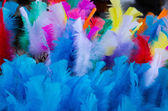 Coloured easter feathers — Stock Photo