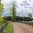 Old gravel road by the lake — Stock Photo #46164169