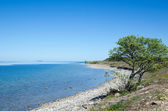 Peaceful coastline with clear blue and calm water — Stock Photo