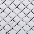 Stock Photo: Frosty mesh