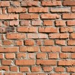 Brick wall — Stock Photo #14751533