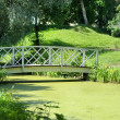 The bridge across the pond. — Stock Photo