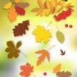 Stock Vector: Autumn floral background.